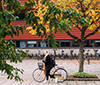 Student riding the bike on Campus Valla in the autumn.
